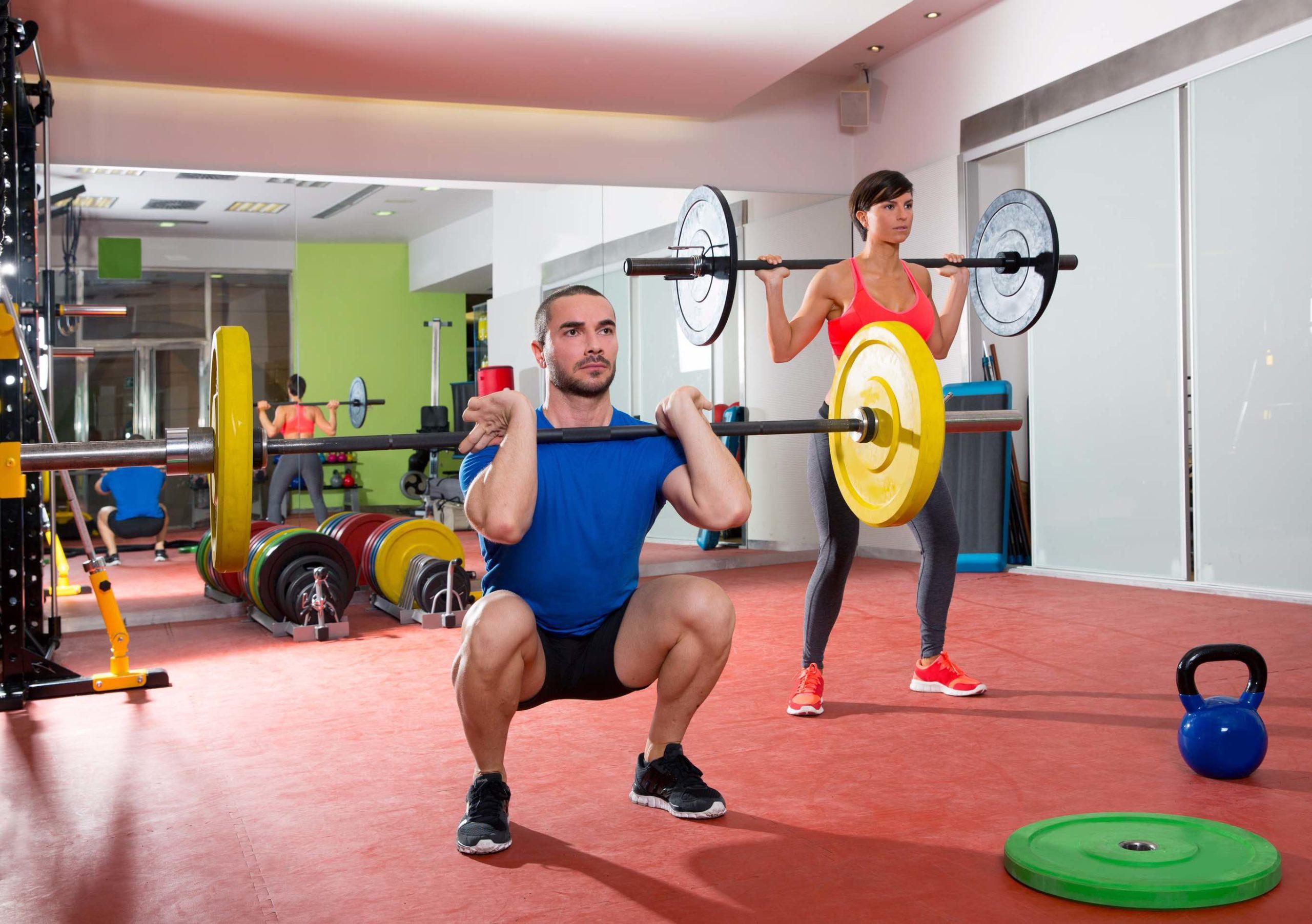 Deine wichtigsten Muskeln im Überblick