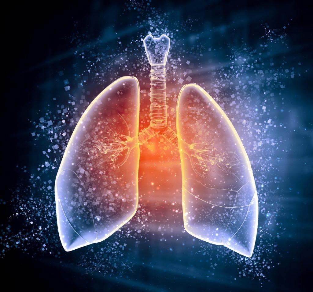 Ausdauersport und Lunge