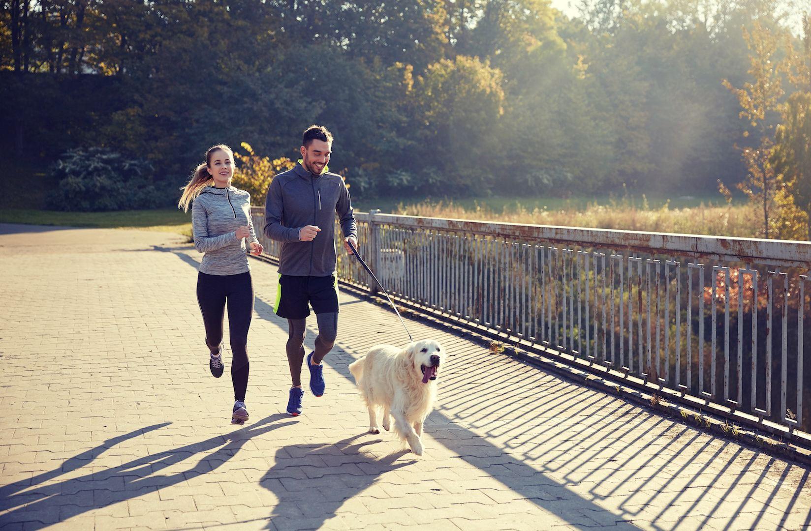 Was Ausdauersport mit Deinem Körper macht